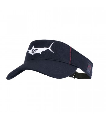 Blue Marlin Flybridge Visor